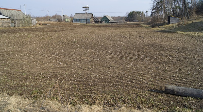 поле с камнями